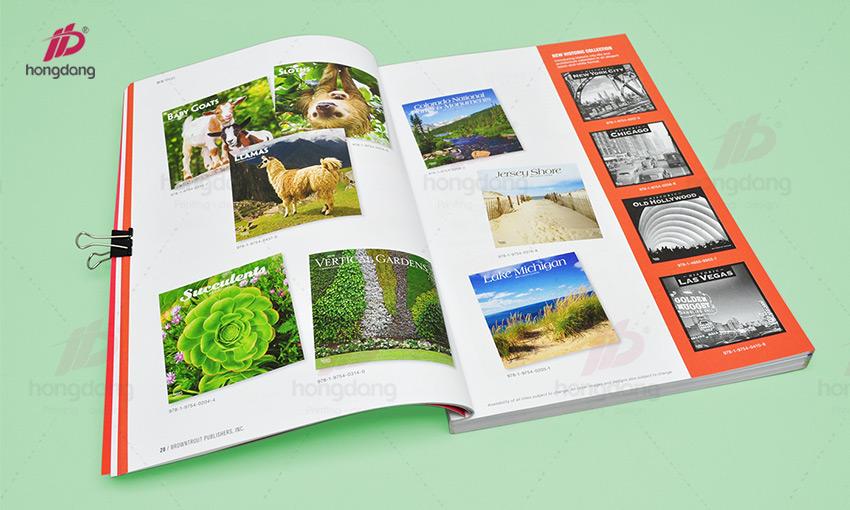 bao-gia-catalog